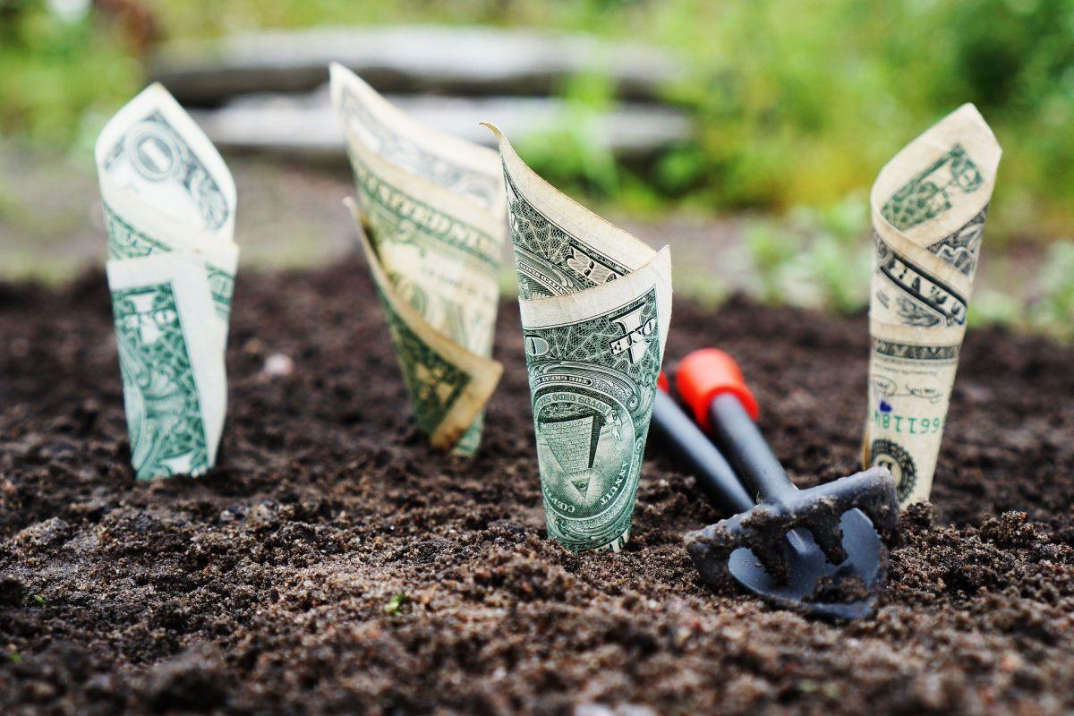 Tres tipos de cuentas bancarias útiles para hacer rendir mejor tus ahorros