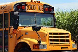 Cómo conseguir trabajo como conductor de buses escolares en Estados Unidos y cuánto se gana