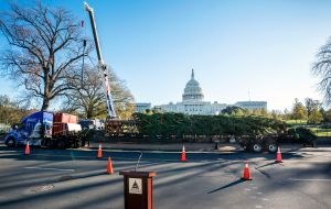 Economistas destacados urgen a Congreso a aprobar un nuevo paquete de ayuda