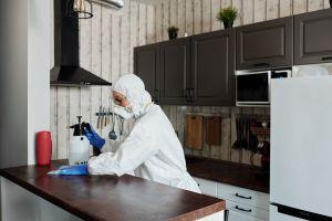 Cómo convertirte en un técnico especialista en control de plagas y cuánto podrías ganar