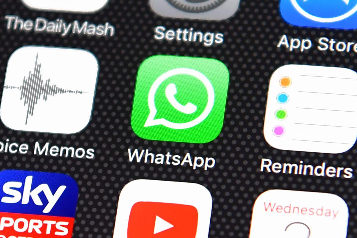 Cómo te afectan los nuevos términos de servicio y privacidad de WhatsApp, ¿cambiarás de app?