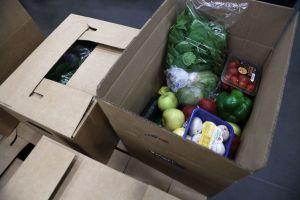 Cómo funciona el programa Farmers to Families Food Box para combatir la crisis alimentaria y por qué está en riesgo de desaparecer