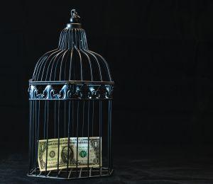 ¿Cuánto dinero obtendrías en tus cheques de pago si no tuvieras que pagar impuestos?
