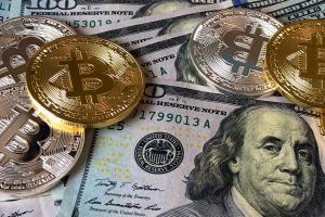 Millonarios inesperados: un portal financiero transfirió cifras millonarias de Bitcoins a sus clientes por error