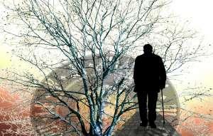 Seguro Social: los 3 datos importantes para maximizar el beneficio para tu jubilación
