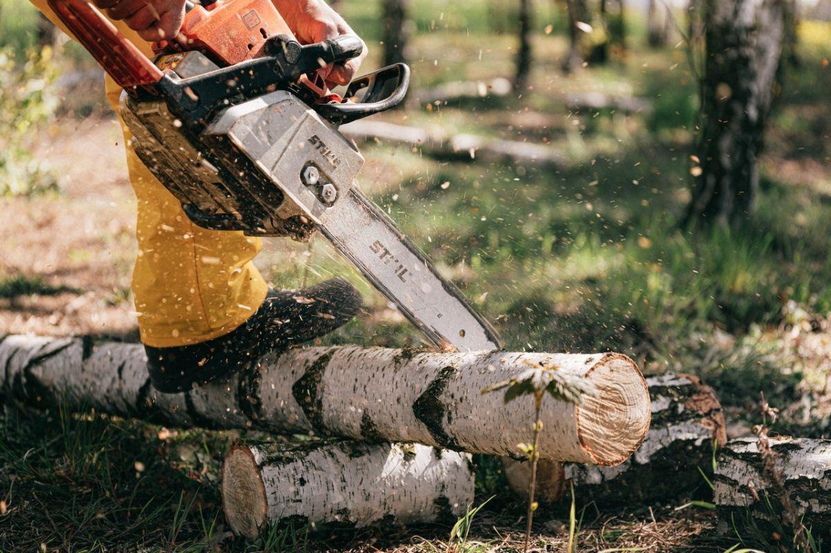 Los madereros son una de las industria que enfrenta la escasez de empleados.